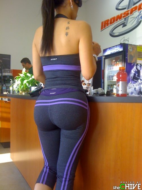 Yoga Pants Gym Yoga Pants Gym